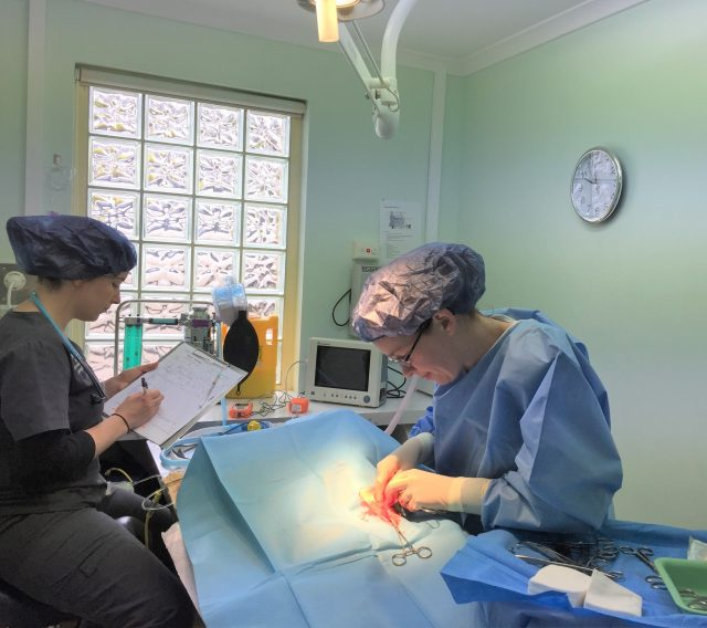 Karen In Surgery